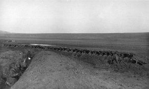 Војници 15. пука Тимочке дивизије I позива у рову