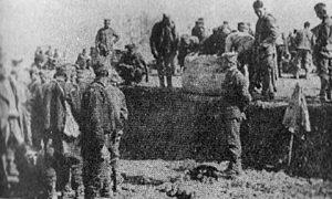 Први дани по доласку спрске војске на Крф у јануару 1916. године